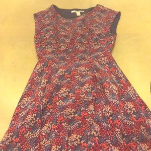 Cute dress for fall!